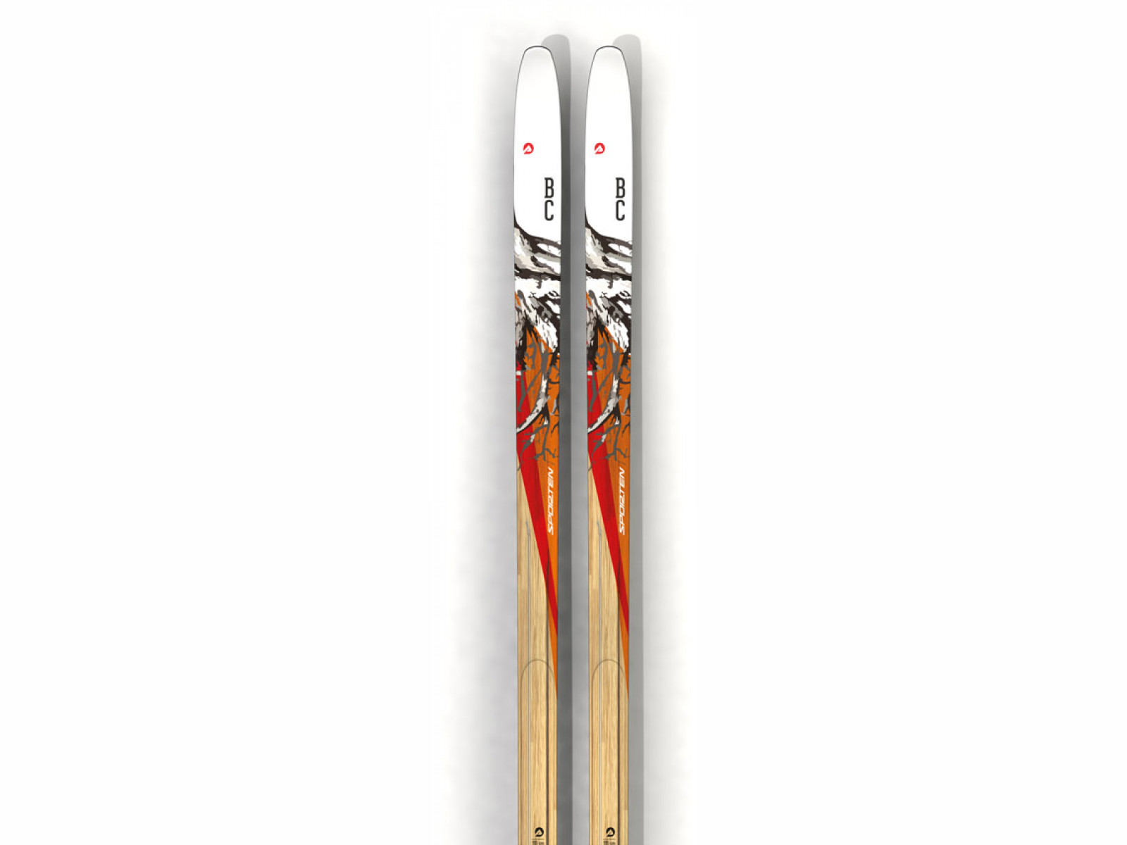 Sporten Explorer Skin Délka: 165 cm 2019/2020