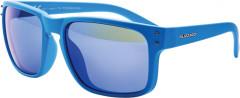 Sluneční brýle Blizzard PCSC606003
