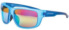 Sluneční brýle Blizzard PCS708120