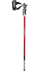 sjezdové hole Leki Alpine Stick